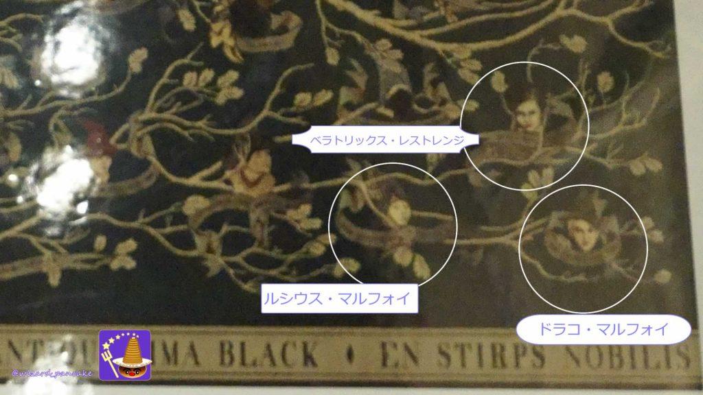 ドラコ・マルフォイ(ブラック家の家系図)