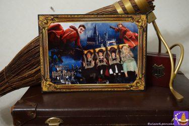 ハリポタ仮装でライド ハリポタ ジャーニー(禁旅)へ乗って記念写真を手に入れよう♪(写真サービス:有料)フィルチの没収品店
