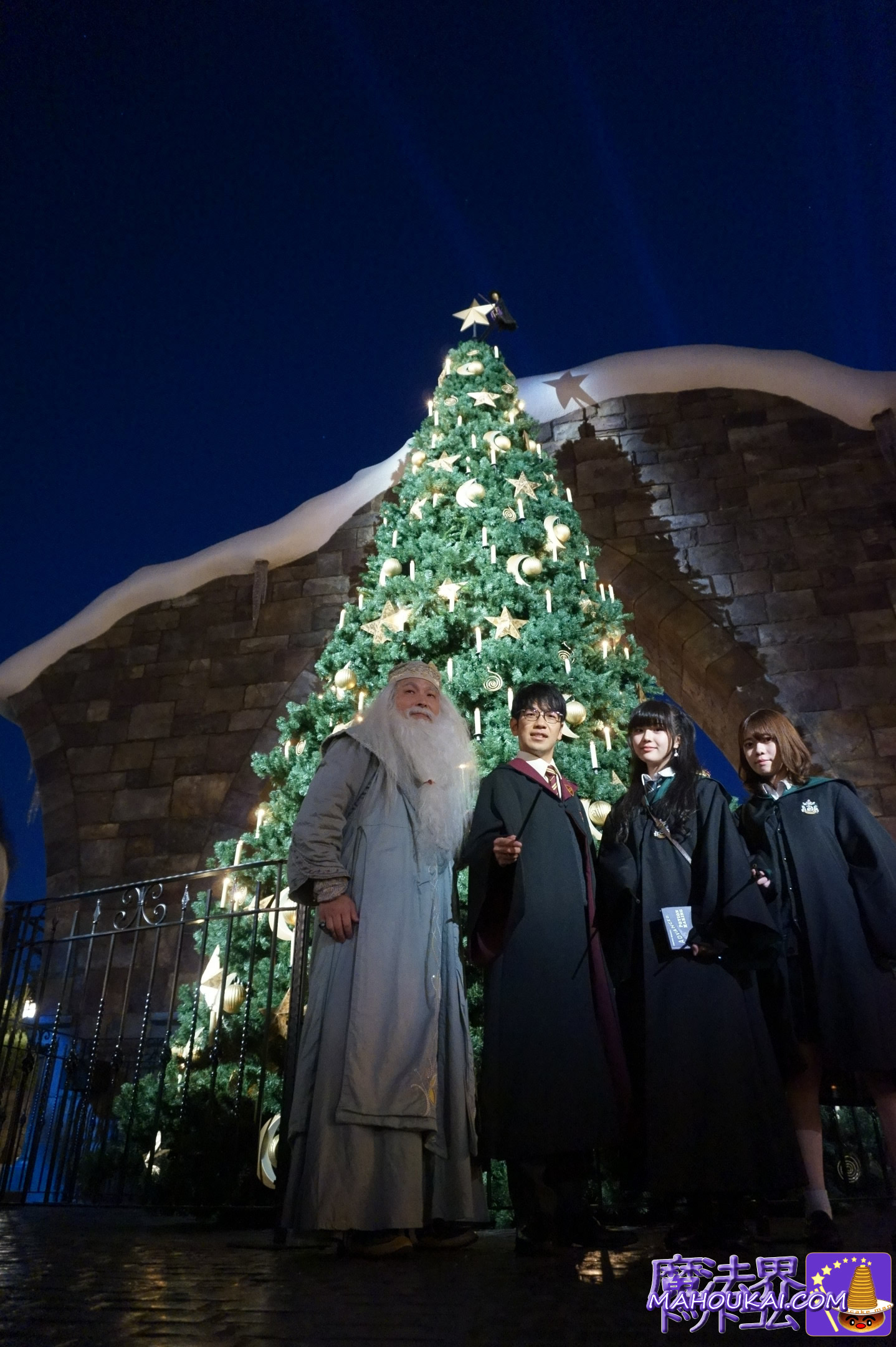 魔法界のクリスマスツリー ナイト(USJハリーポッターエリア)