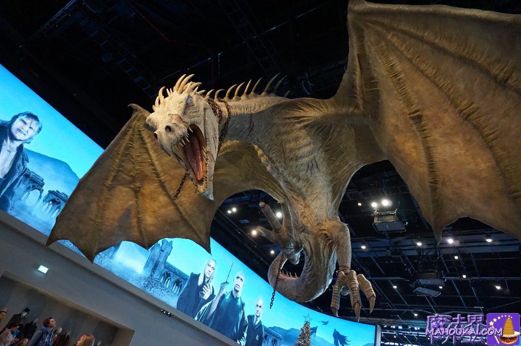 ロビーエリアの奥にはHub(ハブエリア)があります。上から巨大なドラゴン ワーナーブラザースのスタジオツアー(ロンドン)