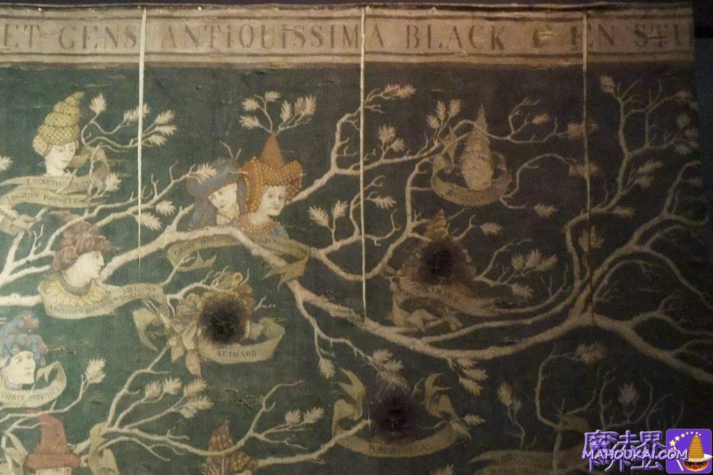 ブラック家の家系図のシリウス・ブラックの焼き跡? ワーナーブラザース ハリーポッタースタジオツアー(イギリス/ロンドン)