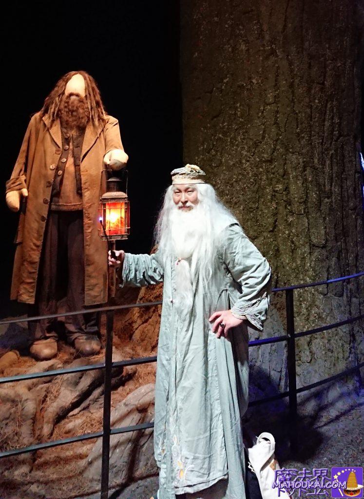 禁じられた森とハグリッド