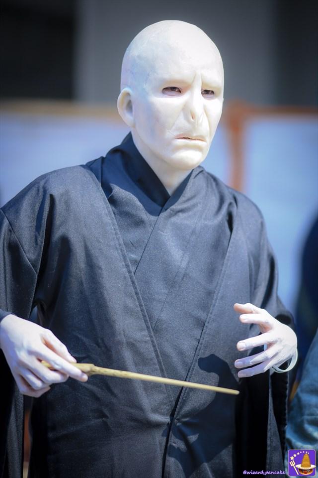 日本最大のコスプレの祭典 日本橋ストリートフェスタでハリポタ仮装で遊んできたぞ♪byパンケーキマン・ダンブルドア ストフェス2017